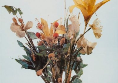 Dried Silk Flowers from the Astana Graveyard
